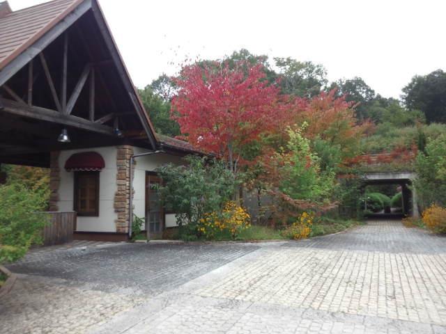 ここ泉郷の別荘地では紅葉が始まってます